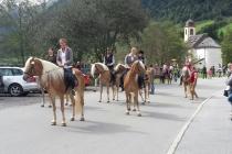 Almabtrieb Gschnitz (3)