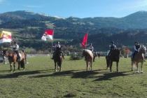 Pferdeherbst Mils 2017 (1)